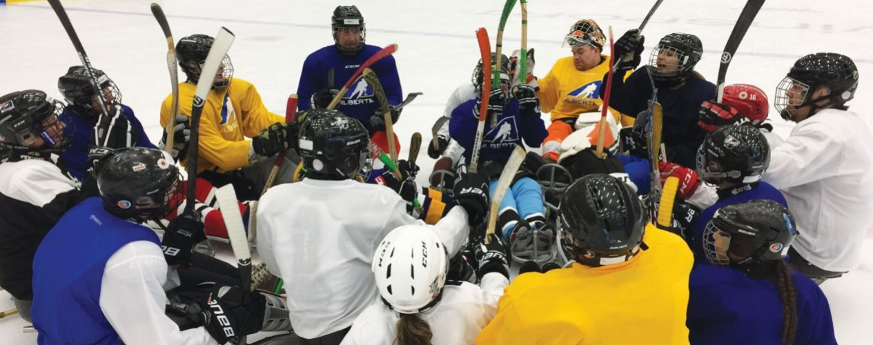 Coaching Sledge Hockey