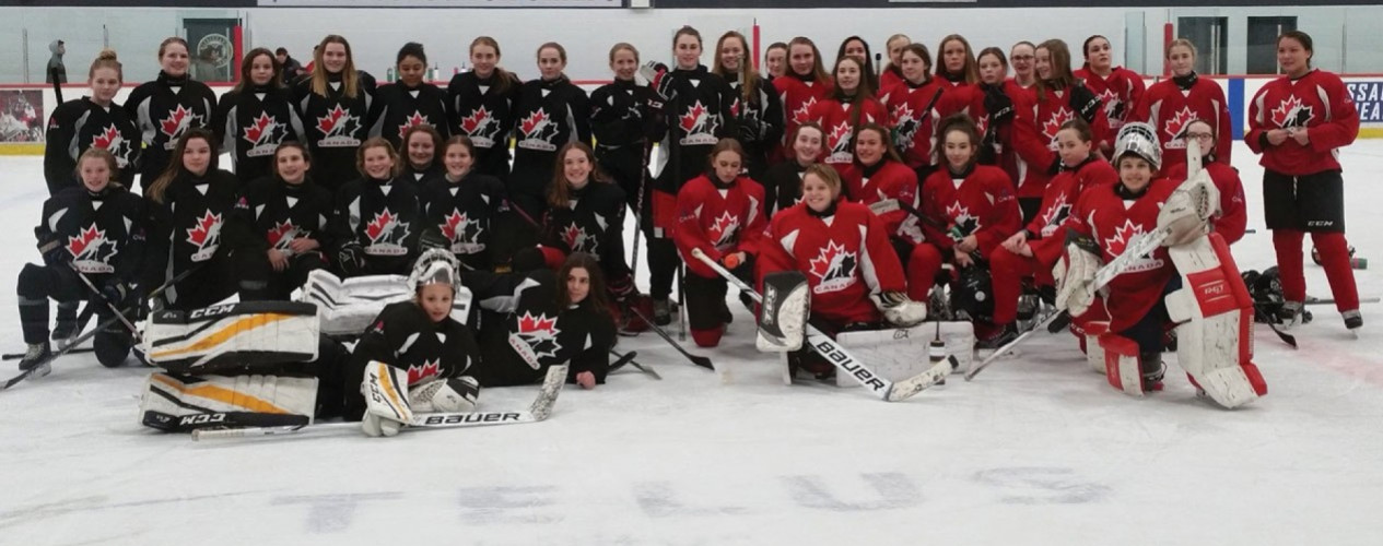 Large Female Hockey Team