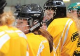 Implementation Process Underway For New Female Hockey Model