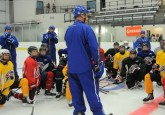 AJHL, Hockey Alberta partner on elite development camp