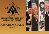 Bruins legend Bucyk highlights 2016 AHHF induction class