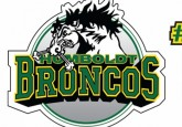 The Humboldt Broncos