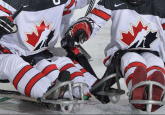 Six Albertans named for Canada's National Para Hockey Team Training Camp