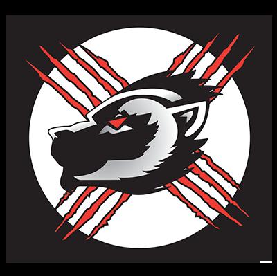 Wolverines Wheelchair Sports Association Logo